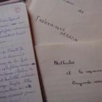 Premier roman - copyright F.Martin