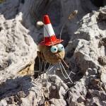 Mine de rien - Insecte Roger Poupon